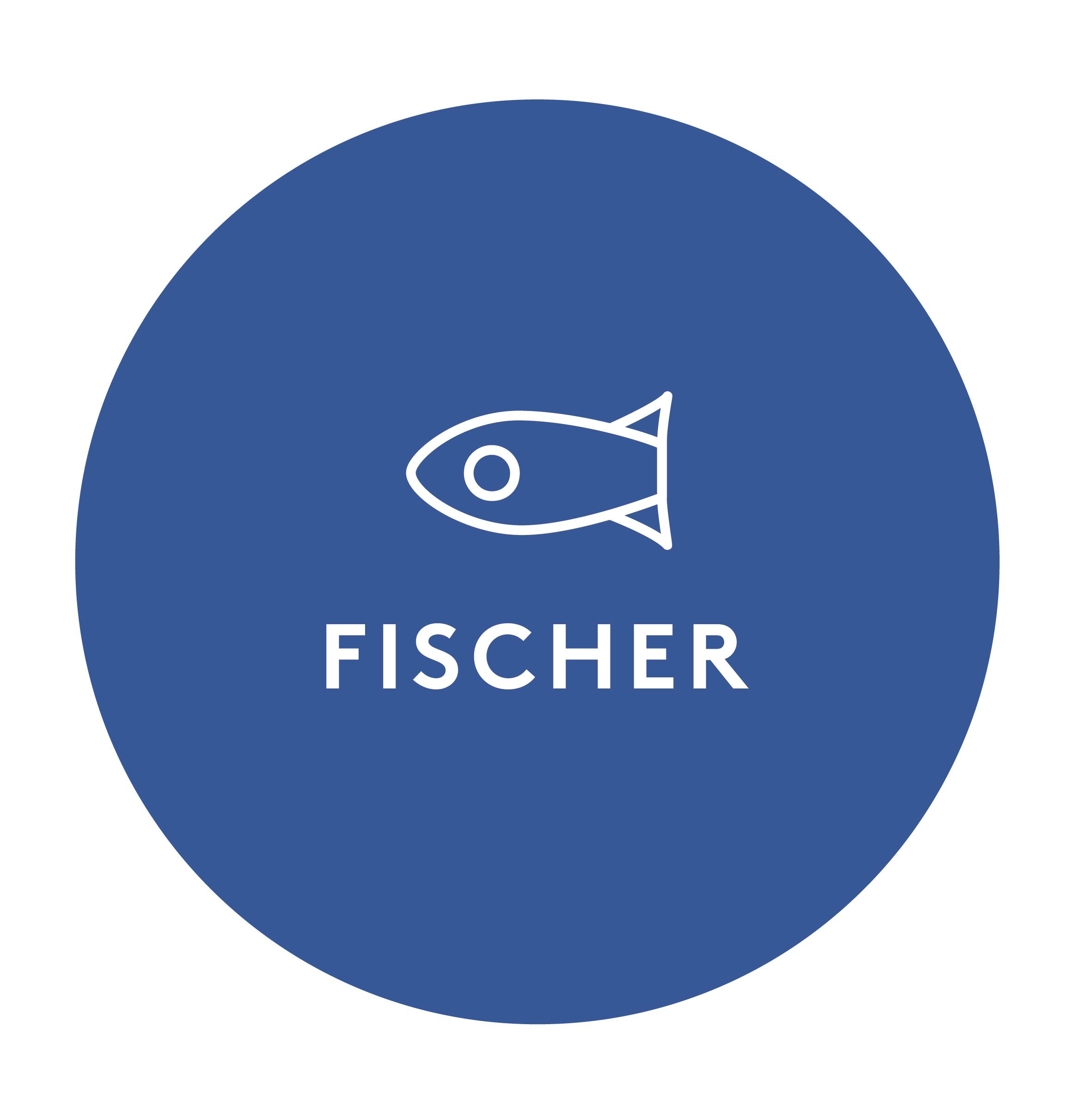 Fischer System-Mechanik GmbH